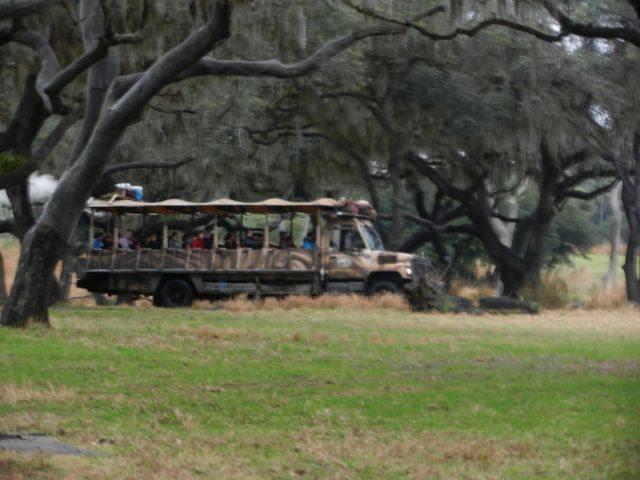 Safari trucks at Animal Kingdom Safari