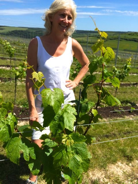 Sarah with the vines