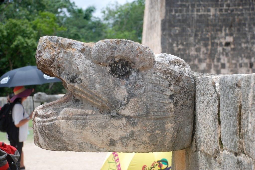 Serpent's head