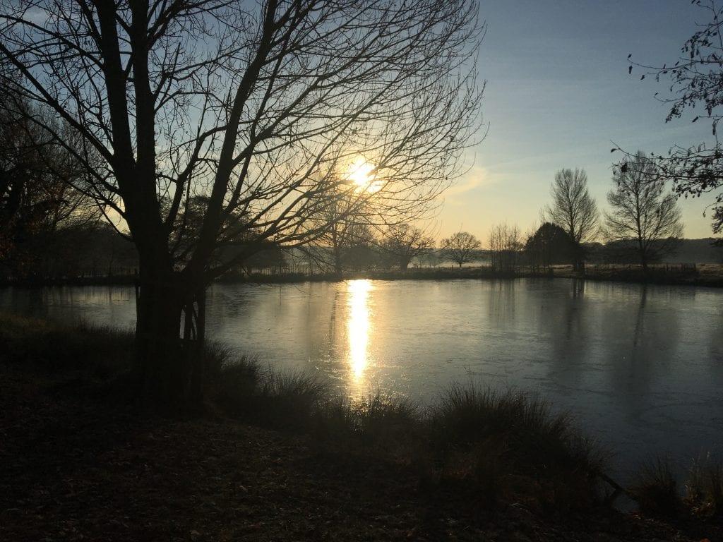 Richmond pond view