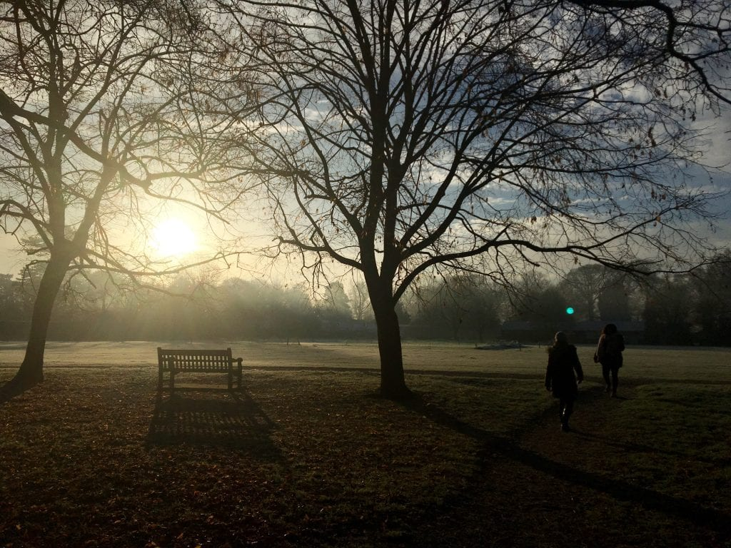 Early morning walk/bench