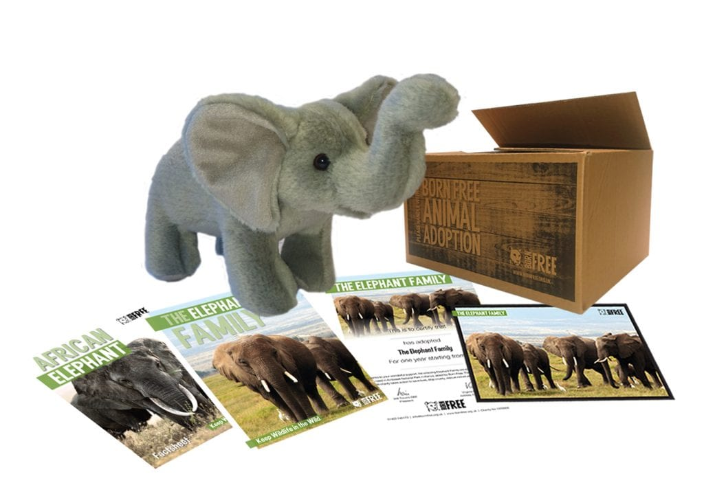 Born Free Elephant pack