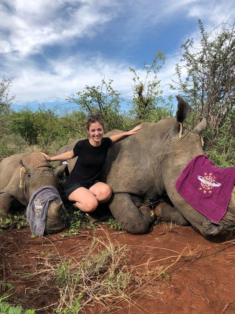 tagging rhinos